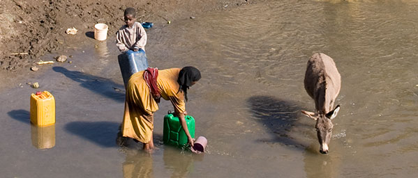 Woman and child fetching dirty water with a donkey close by.