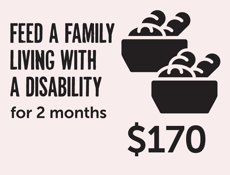 Feed a family living with a disability for 2 months - $170