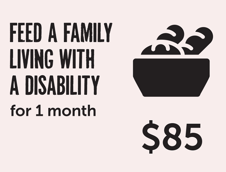 Feed a family living with a disability for 1 month - $85