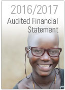 2017 audited financial report